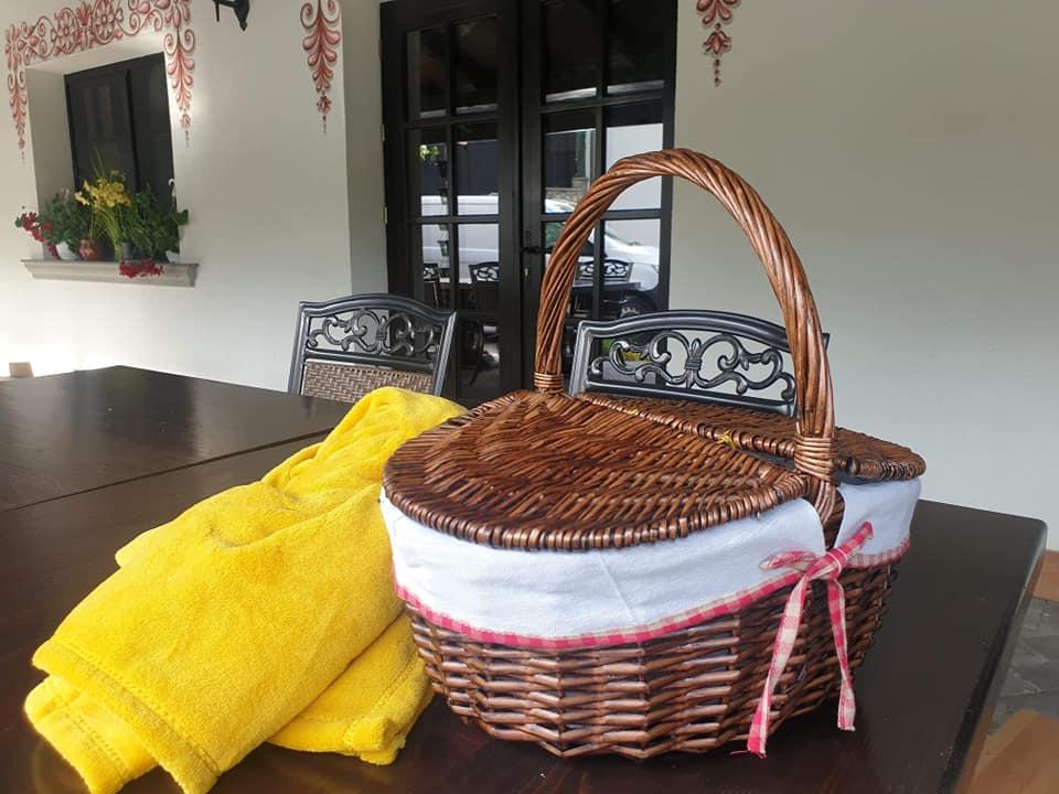 Coș picnic